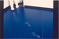 Clean-Zone Flooring (4)